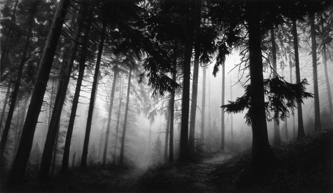 Robert Longo - Untitled (Fairmount Forest)